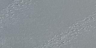 Ash Face Grain with Medium Grey (2) Finish